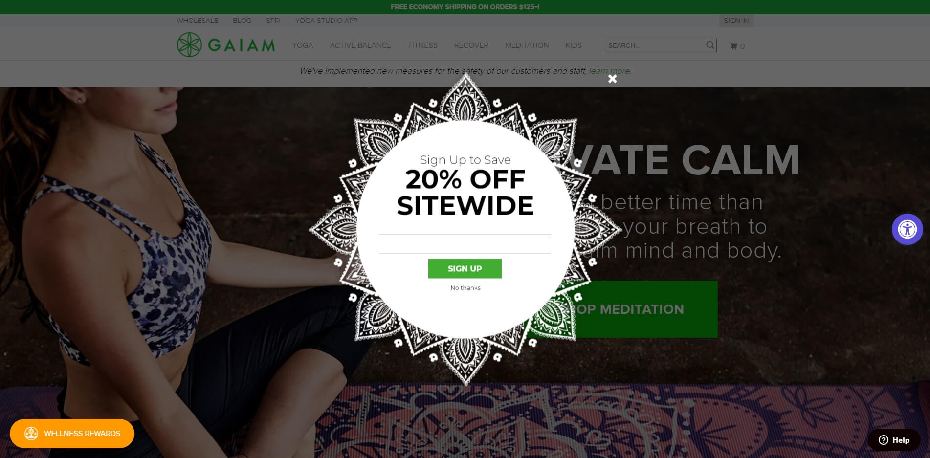 Gaiam email popup examples