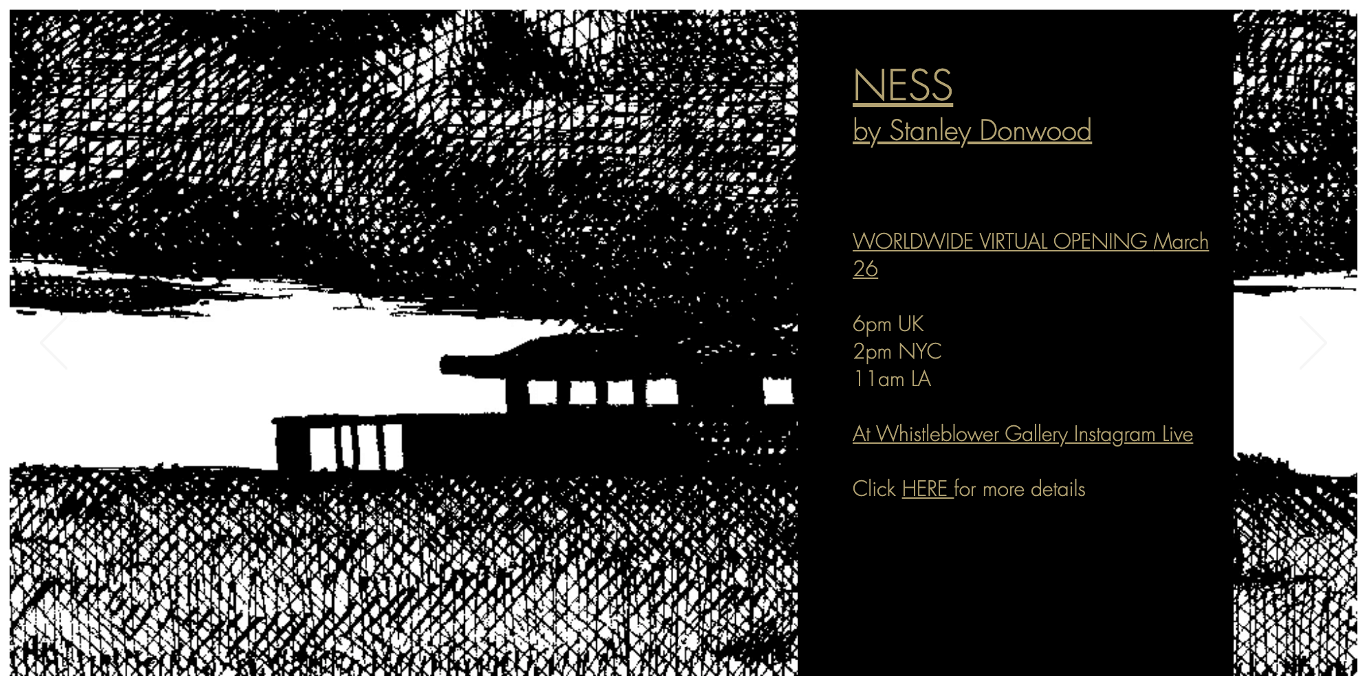 NESS gallery show