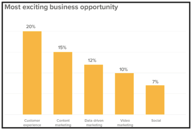 Chart showing customer experience, content marketing, data-driven marketing, video marketing, and social as exciting business opportunities