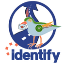 Identify Marketing