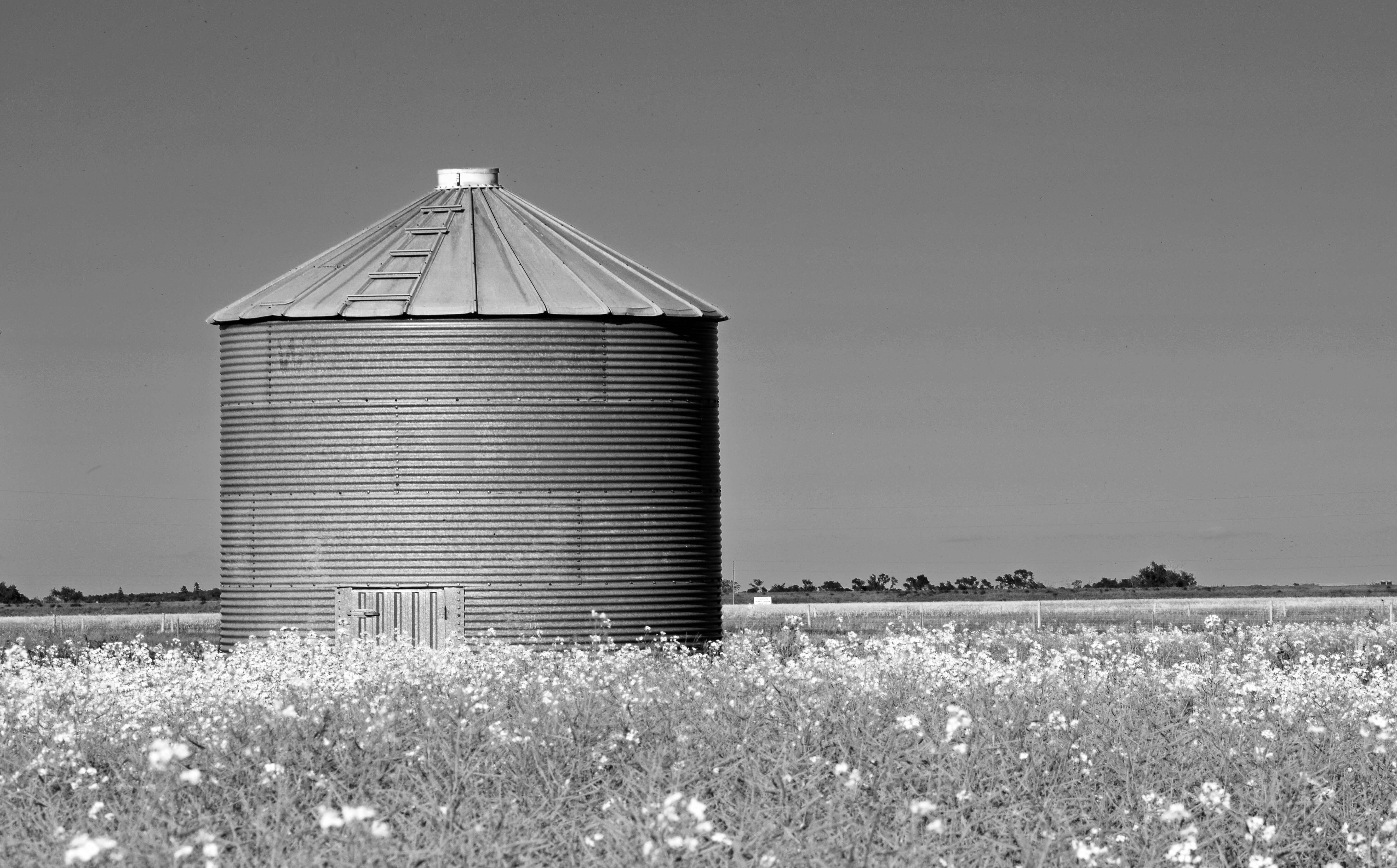 Engineering silo