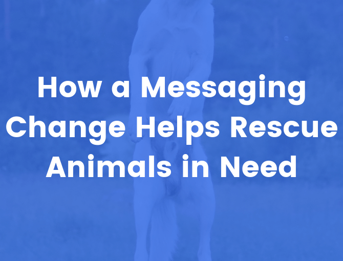 How a messaging change helps animals in need